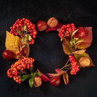 Autumn wreath, square design template with copy space, fall leaves flat lay composition, top shot