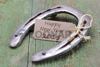 Glücksbringer Hufeisen für 2015