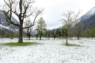 Wintereinbruch im Frühling, Ahornboden, Tirol