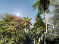 Paradise on Hawaii Island 3d rendering