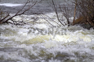 Taiga flowing spring river