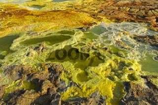 Salzlaugenpool mit Schwefelsedimenten, Geothermalgebiet Dallol, Danakilsenke, Afar Dreieck, Äthiopie
