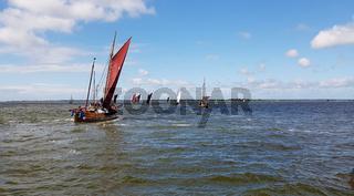 Zeesboot, Segelboot, Boddenlandschaft