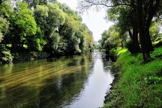 mit der Oos ins Rheinauengebiet bei Iffezheim