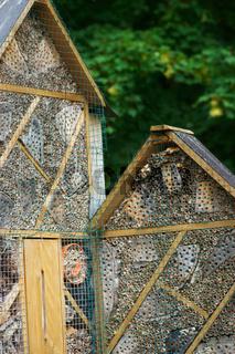 Insektenhotel im Sommergarten