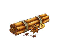 Spices: cinnamon, anise, cloves. Watercolor illustration