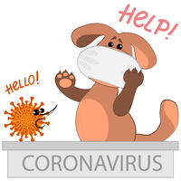 Vector illustration on a square background - a dog in a medical mask and a very terrible coronavirus.
