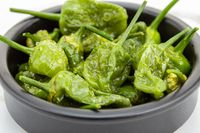 Cooked Padron peppers with olive oil and sea salt