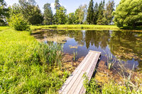 Summer landscape with small pond