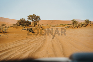 Deep car tire track on desert sand