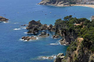Nice nature scene of the sea and cliffs with trees in sunny weather