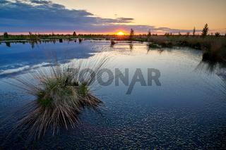 Sonnenuntergang Hochmoor im Sommer