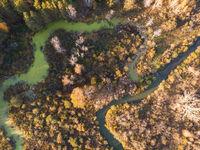 autumn landscape with river.