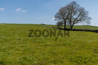 Near Hartlington, North Yorkshire, England