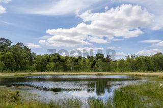 Heideweiher Naturschutz-und FFH-Gebiet Fürstenkuhle, Gescher