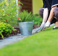 Gardening - removing weeds from the footpath in the garden