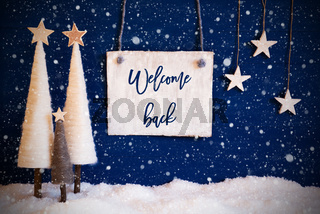 Christmas Tree, Blue Background, Snow, Text Welcome Back, Snowflakes