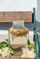 Elderflower syrup homemade - juice healthy and natural