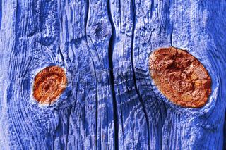 Holz mit Augen
