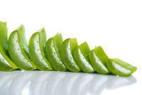 Slices of Aloe Vera leaves and Aloe Vera gel on a white background. Aloe Vera is a very useful herbal medicine for skincare and hair care.