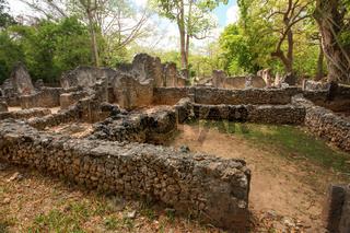 Ruins of ancient african city Gede (Gedi) in Watamu, Kenya with trees and sky in background.