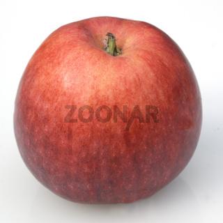 Early Blaze Apfel