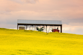 Farming shed in canola field