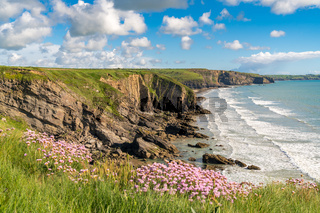 Madoc's Haven, Pembrokeshire, Dyfed, Wales, UK