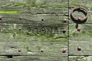 gruenes Holz mit Eisen