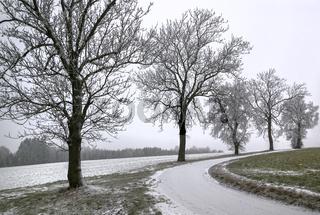 Hofer Winterlandschaft
