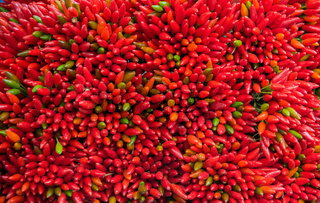 Lots of red peppers arranged at the market
