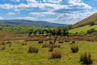 Yorkshire Dales Landscape near Cautley Spout, Cumbria, England