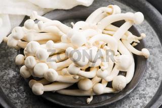 White beech mushrooms, Shimeji mushroom