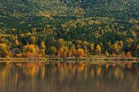 Autumn reflections lake