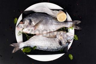 Delicious seafood.