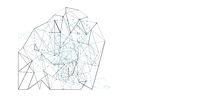 net, network, plexus background