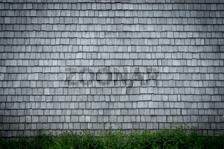 Shingle aged wooden background. Weathered shakes, nice colored texture with vignette.