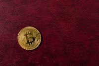 Golden bitcoin coin on leather background. Crypto currency