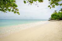 amazing beach of Cayo Levantado