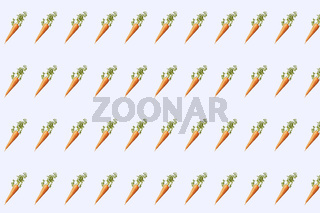 Vegetable pattern from natural organic carrot.