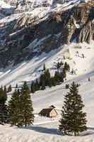 Winter landscape with mountain huts on the Schwaegalp, Canton Appenzell Ausserrhoden, Switzerland