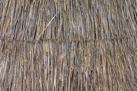 Thatched Roof Detail Texture