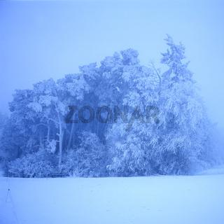 Winterlandschaft, Taunus,