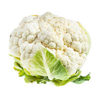 fresh ripe Cauliflower isolated on white