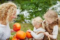 Kinder ernten Kürbis für Halloween