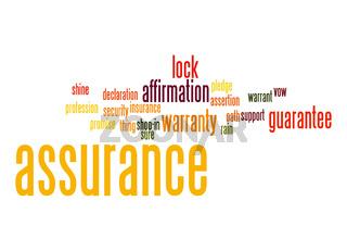Assurance word cloud