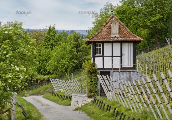 Vineyard timberd house,  Schaffhausen Switzerland