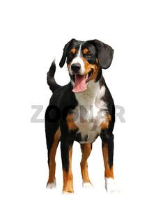 Standing dog