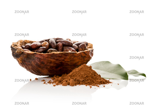 Cocoa powder and fresh roasted beans on white background.