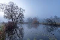 Morning fog at Paar river near Schrobenhausen, Bavaria, Germany in autumn